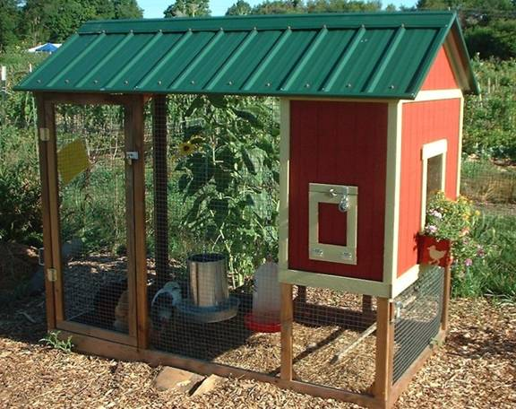 Shed plans online how to build a chicken coop design your for Build your own barn online