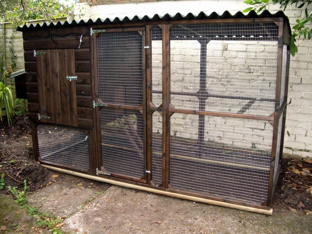How to Build a Chicken Coop – Design Your Own Or Use Ready-Made ...