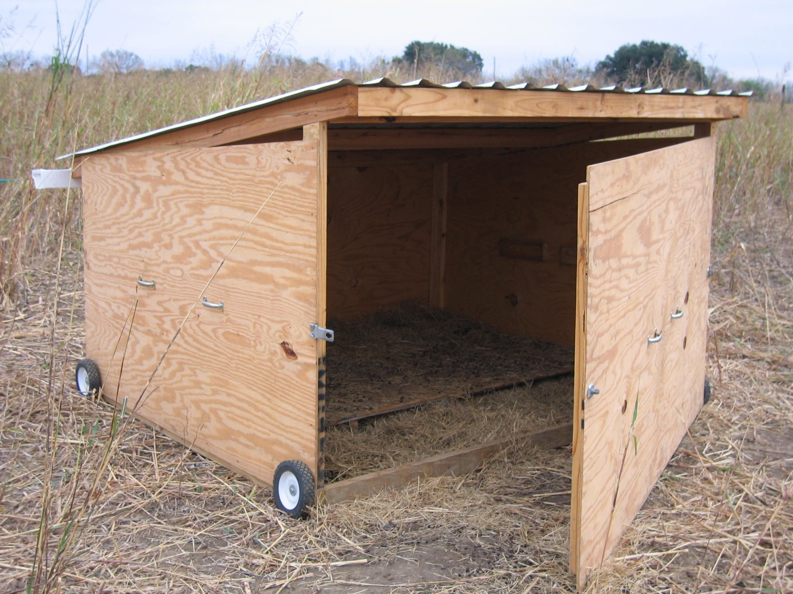 Goat Shelter Plans What Must You Look Out For When