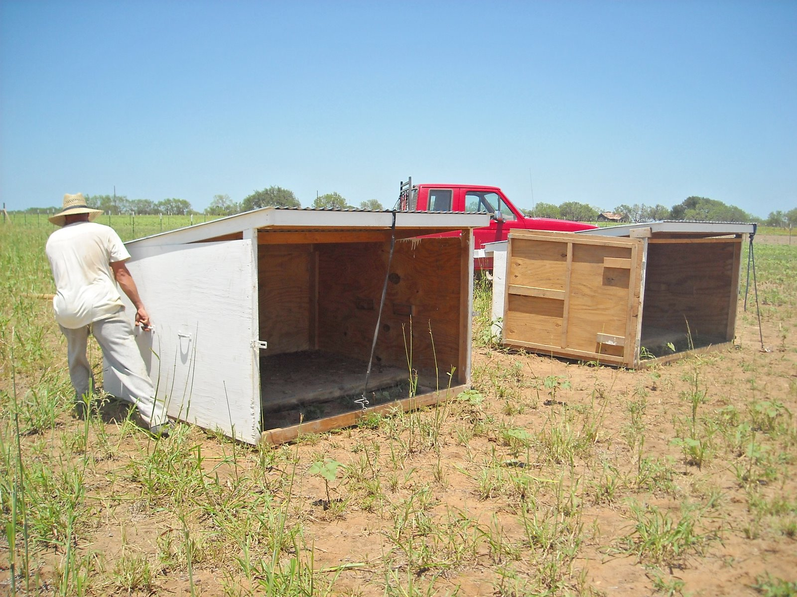Goat Shed Designs